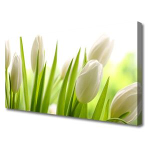 Canvas print Tulips floral white green 100x50 cm
