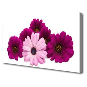 Canvas print Flowers floral red pink 100x50 cm