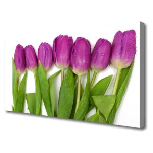 Canvas print Tulips floral red green 100x50 cm