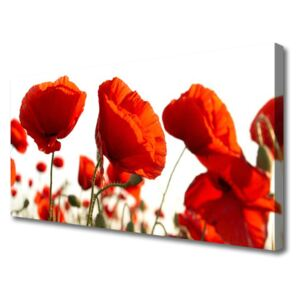 Canvas print Poppies floral red 100x50 cm