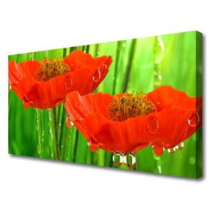 Canvas print Poppies floral red green 100x50 cm