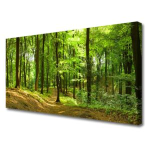 Canvas print Forest nature brown green 100x50 cm