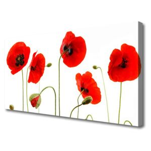 Canvas print Poppies floral red black green 100x50 cm