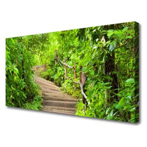 Canvas print Stairs nature brown green 100x50 cm