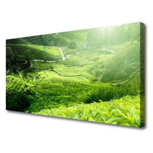 Canvas print Meadow nature green 100x50 cm