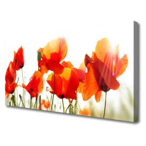Canvas print Poppies floral red yellow 100x50 cm