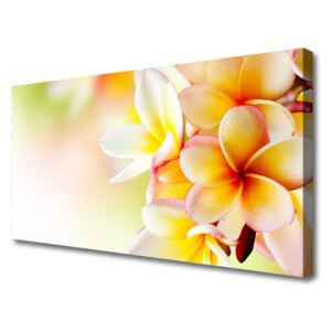 Canvas print Flowers floral green red white 100x50 cm
