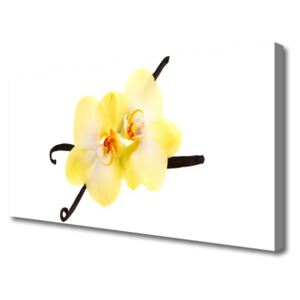 Canvas Wall art Flowers floral white yellow brown 100x50 cm