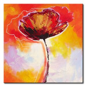 Canvas Print Poppies: Poppy seeds – in other way