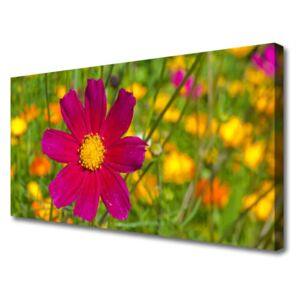 Canvas Wall art Flower floral yellow red 100x50 cm