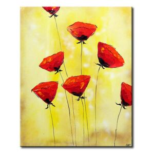 Canvas Print Poppies: Delicate poppies