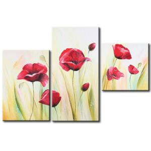 Canvas Print Poppies: Poppies in the morning dew