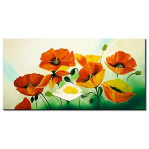 Canvas Print Poppies: Composition of poppies