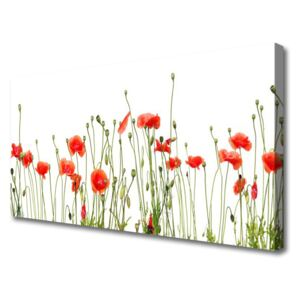 Canvas Wall art Poppies floral red green 100x50 cm