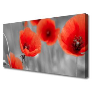 Canvas Wall art Poppies floral red grey 100x50 cm