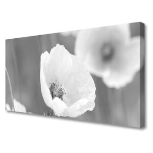 Canvas Wall art Poppies floral grey 100x50 cm
