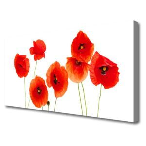 Canvas Wall art Poppies floral red black 100x50 cm