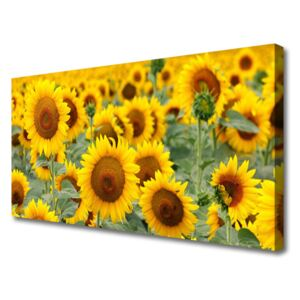 Canvas Wall art Sunflowers floral brown yellow 100x50 cm