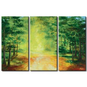 Canvas Print Forest: A way through the forest