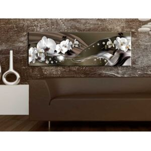 Canvas Print Orchids: Chocolate Dance of Orchid
