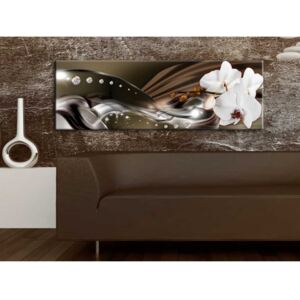 Canvas Print Orchids: Orchid Trail