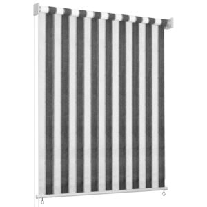 Outdoor Roller Blind 60x230 cm Anthracite and White Stripe