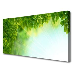 Canvas Wall art Leaves nature green 100x50 cm
