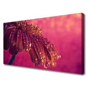Canvas Wall art Tree floral red 100x50 cm