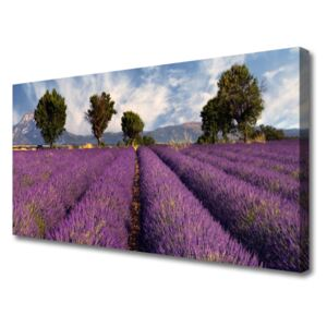 Canvas Wall art Meadow trees nature pink green 100x50 cm