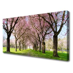 Canvas Wall art Footpath trees nature brown pink green 100x50 cm