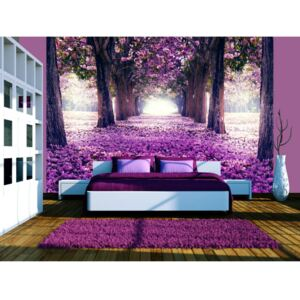 Wall mural Forest and Trees: Flower road