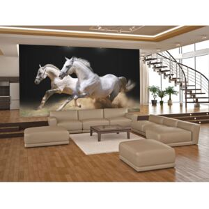 Wall mural Horses: Galloping horses on the sand