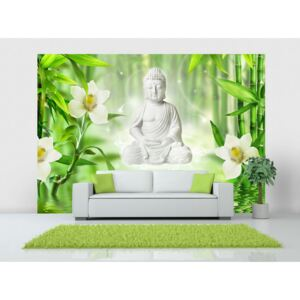 Wall mural Orient: Buddha and nature
