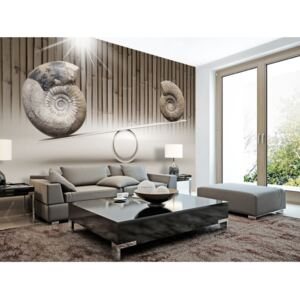 Wall mural Modern: Fun with Fossils