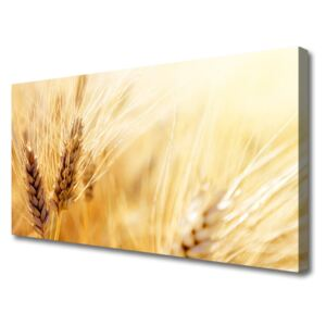 Canvas Wall art Wheat floral yellow 100x50 cm