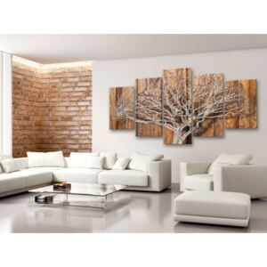 Canvas Print Trees: Chronicle of Tree