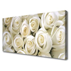 Canvas Wall art Roses floral white 100x50 cm