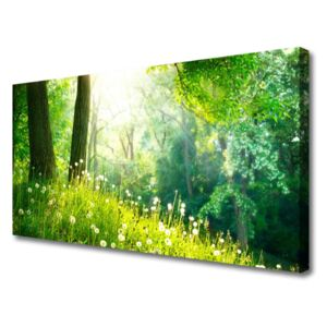 Canvas Wall art Meadow nature green 100x50 cm