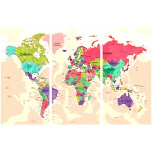Corkboard Map Decorative Pinboards: Geography of Colours [Cork Map]