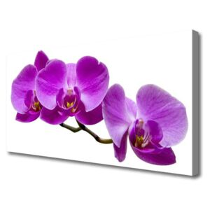 Canvas Wall art Flowers floral pink 100x50 cm