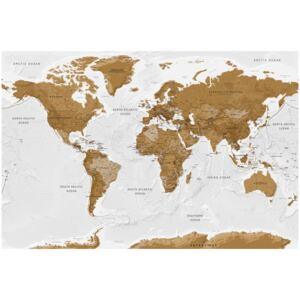 Corkboard Map Decorative Pinboards: White Poetry [Cork Map]