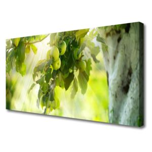 Canvas Wall art Branch of apples kitchen green brown 100x50 cm