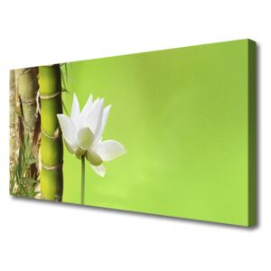 Canvas Wall art Bamboo stalk flower floral green white 100x50 cm