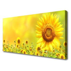 Canvas Wall art Sunflowers floral yellow brown 100x50 cm