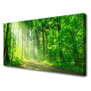 Canvas Wall art Forest nature brown green 100x50 cm