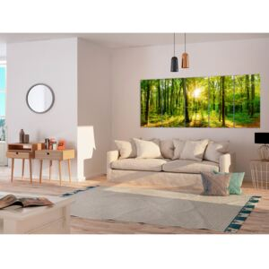 Canvas Print Forest: Magic Forest
