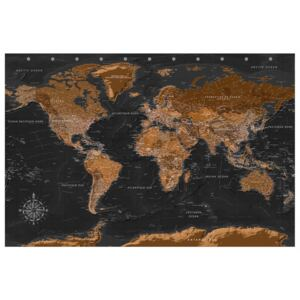 Corkboard Map Decorative Pinboards: Brown World Map [Cork Map - French Text]