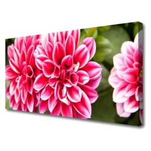 Canvas Wall art Flowers floral red white 100x50 cm