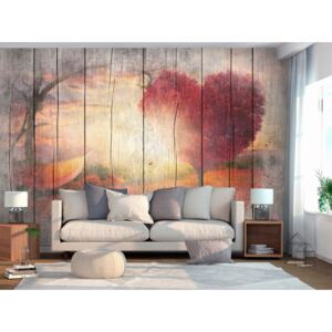 Wall mural Forest and Trees: Autumnal Love