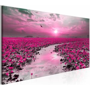 Canvas Print Sunrises and Sunsets: Lilies and Sunset (1 Part) Wide